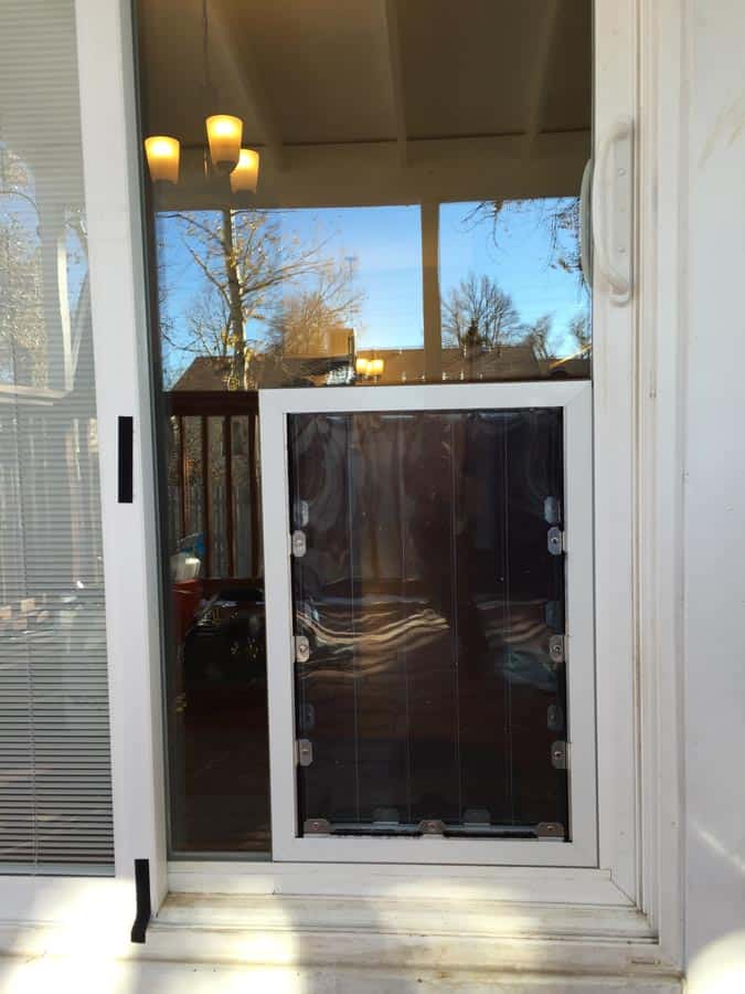 Dog Door Installation In Glass Dog Doors Free Estimates