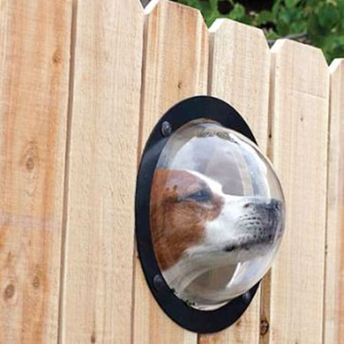 Pet Fence Window